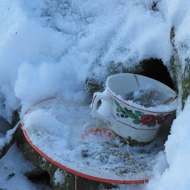 Abandoned by Vicki Clemerson - Artistic Objects Cups, Plates & Utensils ( cup, saucer, snow, forgotten, abandoned, cup and saucer,  )