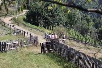 Photo: near Somesul Cald, Romania