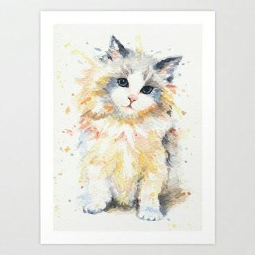 Blue-gen rag doll cat