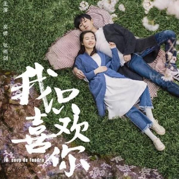 陸劇:《我只喜歡你》吳倩、張雨劍、趙志偉、馬栗主演
