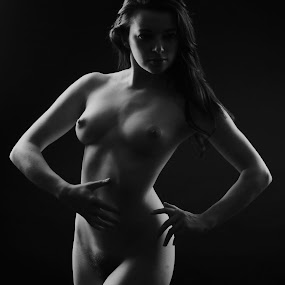 Light and shadow by Vineet Johri - Nudes & Boudoir Artistic Nude ( nude, shadow, helen, art, shape, shade, light,  )