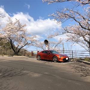 86 ZN6 2016年式 後期 E型 GT 6MTのカスタム事例画像 もーさんの2020年04月05日15:35の投稿