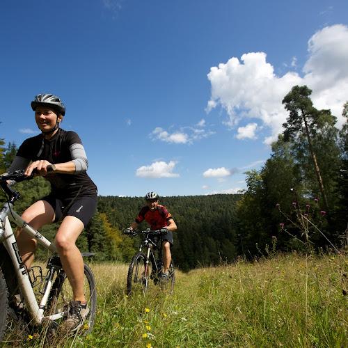Mit dem Mountainbike durch wundervolle Naturkulissen wie Wiesen und Wälder fahren