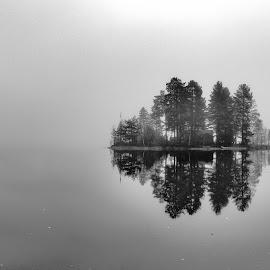Mist by Geir Blom - Black & White Landscapes ( reflection, water, trees, mist, fog )