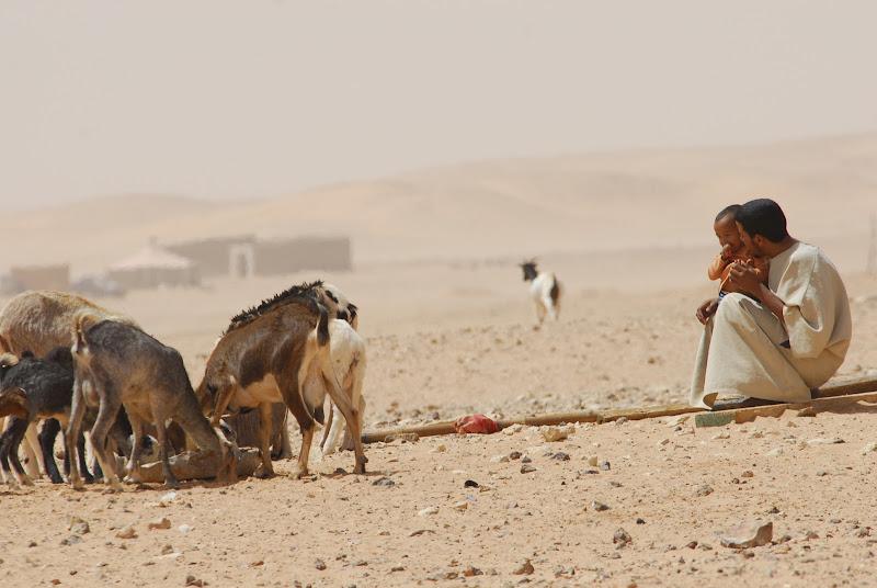 deserto di edoardo giavelli