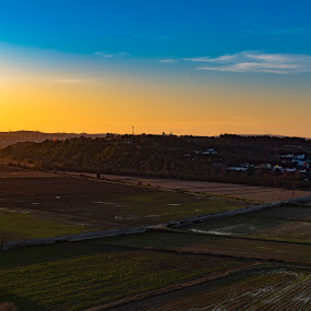 Field by Edu Marques - Landscapes Sunsets & Sunrises ( skylover, photographs, plants, agriculture, land, cloudscape, yellow, landscape, photo, photography, photooftheday, blue sky, sky, blue, sunset, cloud, sunshine, photoshoot, begining, sunrise, landscapes, photo journalism, skyscape )