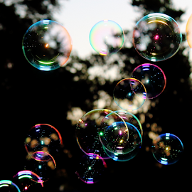 Lotta Bubbles ! by Noel Hankamer - Artistic Objects Other Objects ( circles, colors, bubbles, reflections, round, soap bubbles, spheres, refraction, bokeh,  )