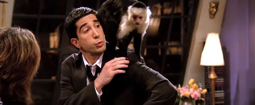 Marcel's Trainer On 'Friends' Thinks 'Despicable' David Schwimmer Hated The Monkey Because He Was 'Jealous'