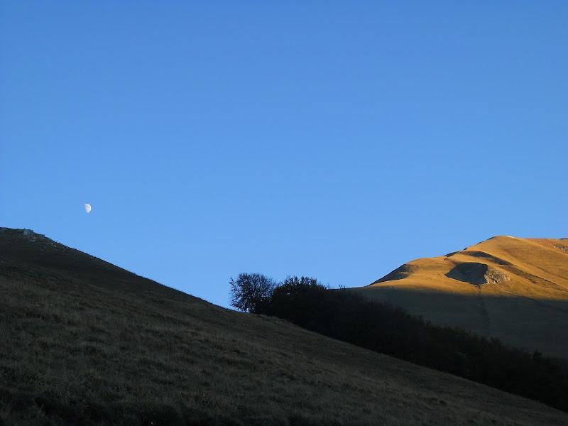 lo sguardo della luna. di smitterson