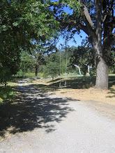 Photo: Yoga Farm, CA - swing