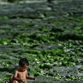 cemme by Yungki Dblur - Babies & Children Children Candids ( children, beach )