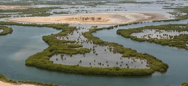 Delta Saloum