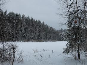 Photo: Лесное озеро