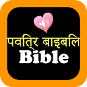 Hindi English Holy Bible Offline Audio Pro icon