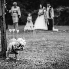 Wedding photographer Zoltán Mészáros (mszros). Photo of 29.08.2016