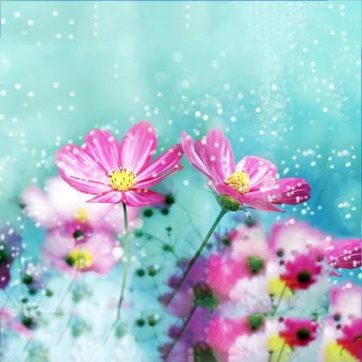 可愛花朵動態壁紙