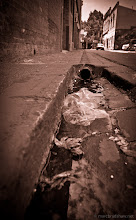 Photo: In the gutter
