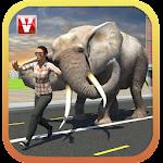 Elephant Racing Simulator 2016 Icon