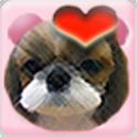 동물소리 (우리 아가를 위한/Animal Sound) icon