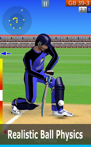 Smashing Cricket 2.2.4 screenshots 6