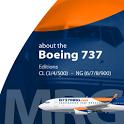 B737 MRG icon