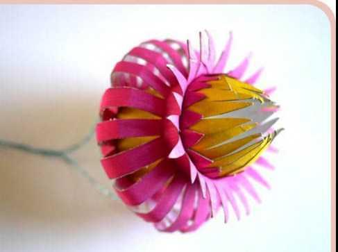 New Paper Flower Tutorials