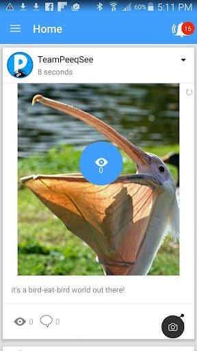 免費下載社交APP|PeeqSee app開箱文|APP開箱王