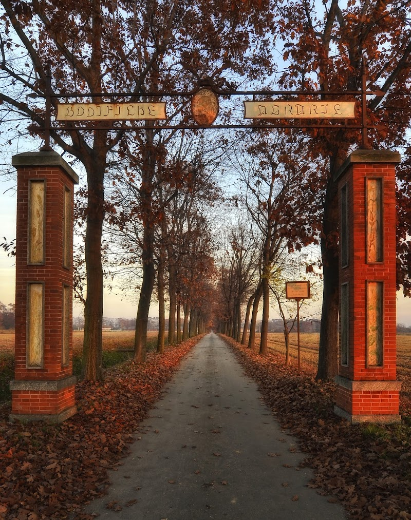 Viale d'autunno di Herrfulvis