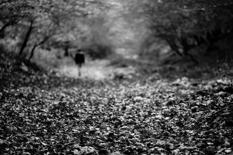Path di Tindara