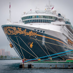 It's a Ship, not a boat by Jeff Yarbrough - Transportation Boats ( nausa, cruise ship, wonder, dcl )