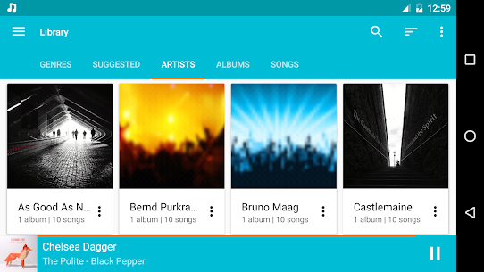 Shuttle+ Music Player v1.6.5 Mod  APK 6