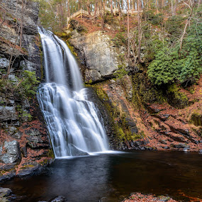 Bushkill waterfall at foll time in Poconos , PA by Jan Gorzynik - Landscapes Waterscapes ( exposure, stream, mountain, splash, waterfall, moss, stone, rock, leaf, beauty, flow, yellow, travel, long, landscape, fantasy, clean, nature, fresh, autumn, creek, wet, motion, light, rain, water, wild, peaceful, park, flowing, green, beautiful, forest, relaxation, scenic, sunlight, environment, jungle, serene, cascade, fall, outdoor, summer, scenery, high, natural, river )