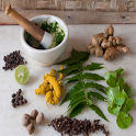 Ayurvedic Plants and Herbs icon