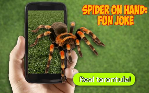 Spider On Hand: Fun Joke