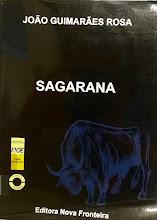 Photo: Sagarana Rosa, João Guimarães  Localização: Braille C R694s  Edição em fonte ampliada
