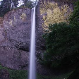 Latourell Falls, Oregon by Larry Chipman - Nature Up Close Water