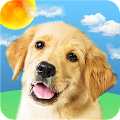 Weather Puppy-Radar,Forecast & Pet Dog Pictures APK