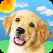 Weather Puppy Mod