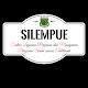Download SILEMPUE - DPMPTSP Kab. Pinrang For PC Windows and Mac