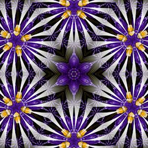 purorsphspheres_edited-2.jpg