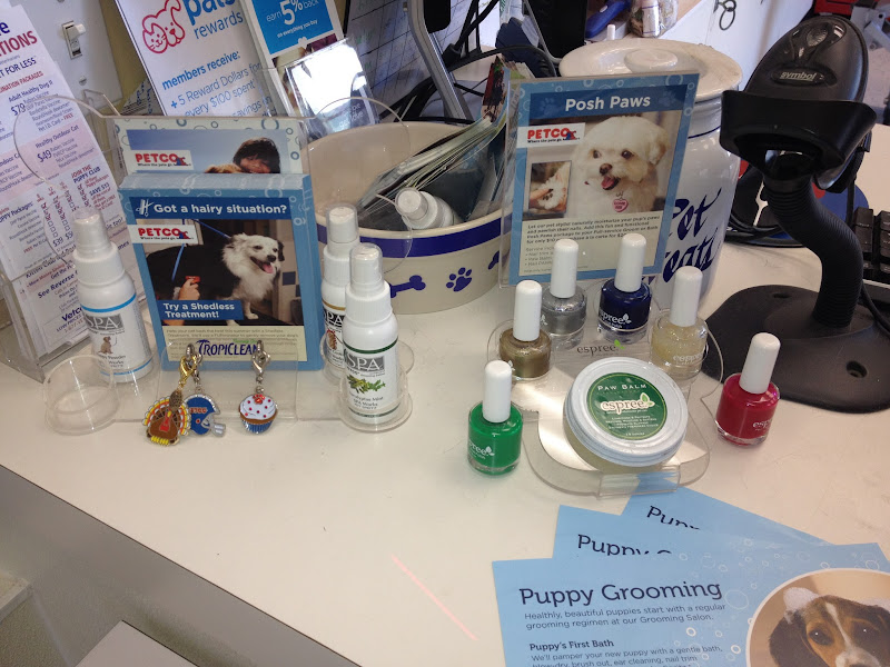 Photo: Sometimes I wish Chatito was a white fluffy dog so I could take advantage of the cute nail polishes Petco has!