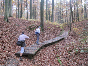 Photo: heerlijke voetpaden in bos