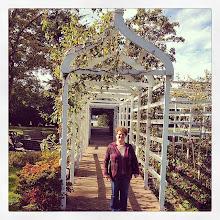 Photo: Empress Garden, downtown Victoria #intercer #garden #britishcolumbia #canada #victoria #flowers #trees #autumn #fall #woman #life #beautiful #pretty #city #bench #portal #sunny #smile - via Instagram, http://ift.tt/1CXJj95