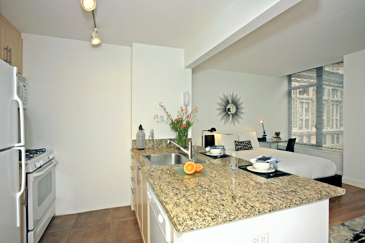 Kitchen at Financial District apartment