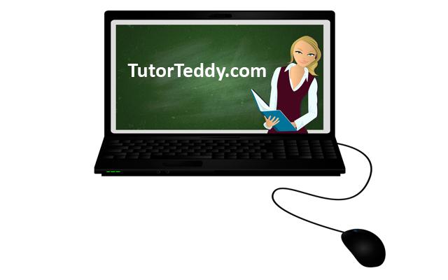 TutorTeddy Homework Help