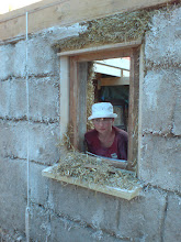 Photo: Zorka in window with plaster edges in place (no hessian)