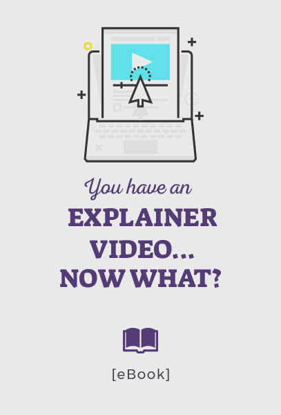 EBOOK you have an explainer video now what