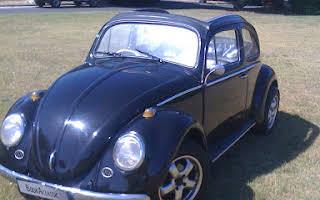 Volkswagen Beetle Convertible Rent Western Cape