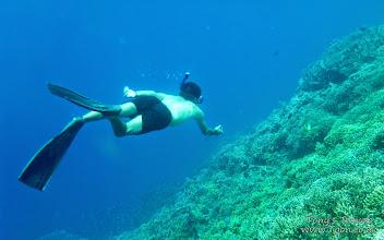 Photo: Snorkelling at Pulau Kakaban, Borneo, Indonesia