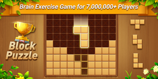 Wood Block Puzzle - Free Classic Block Puzzle Game filehippodl screenshot 6